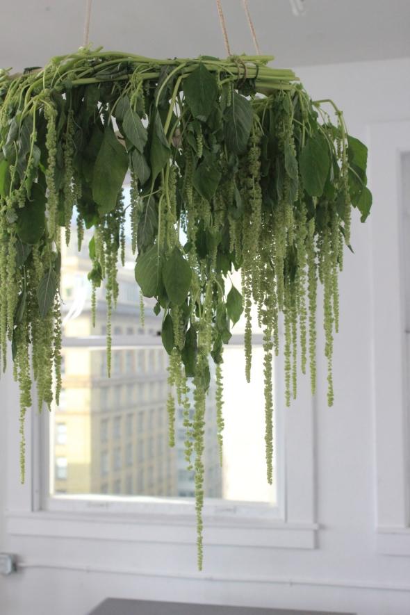 Miss Kris Kin Community You're Invited  Plant Chandelier Plantelier